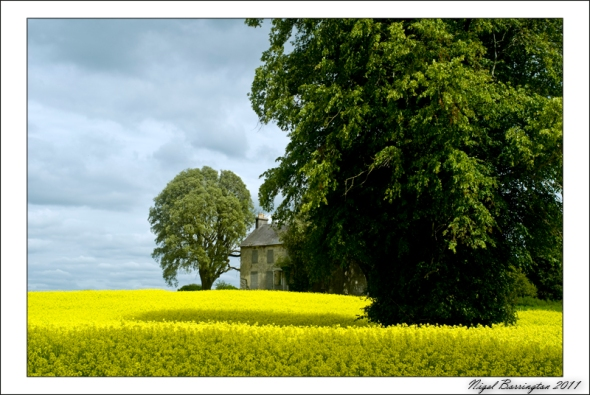 Blanchfieldsland estate, Co Kilkenny