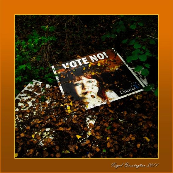 Vote No, vote Libertas