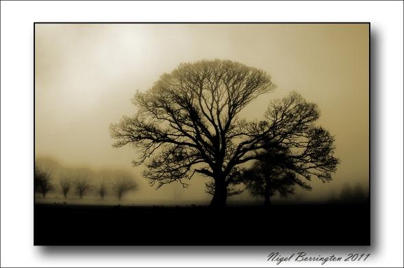 Coolagh Kilkenny, Nigel Borrington