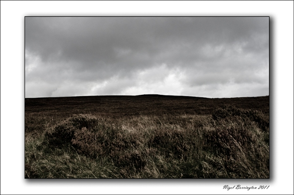 brandon hill Kilkenny