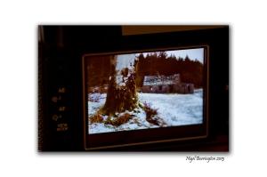 Fuji film X100 Review 10