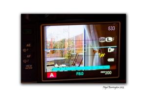 Fuji film X100 Review 9
