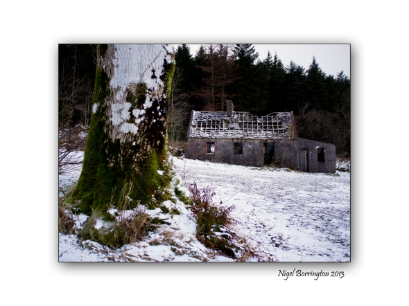 Last of the winter snow