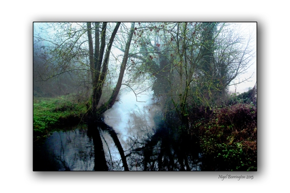 Mist on the kings river kilkenny
