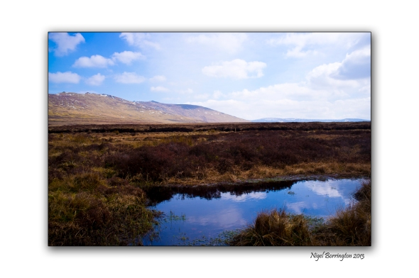 Irish bog lands 1