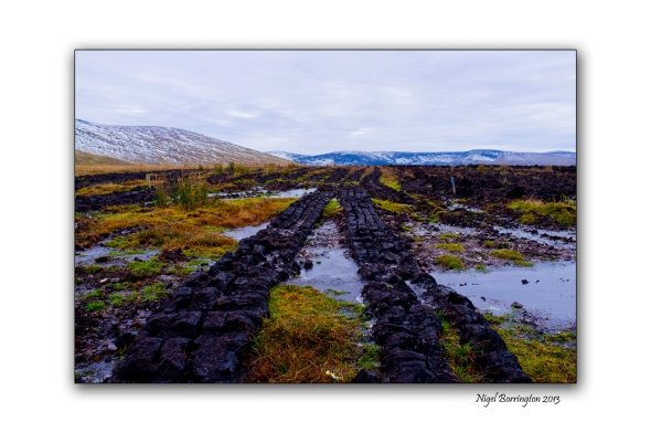 Irish bog lands 2