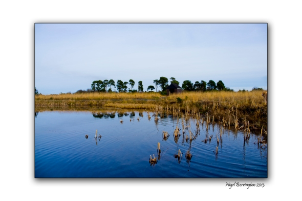 Irish bog lands 4