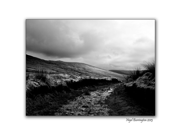 Irish bog lands 5