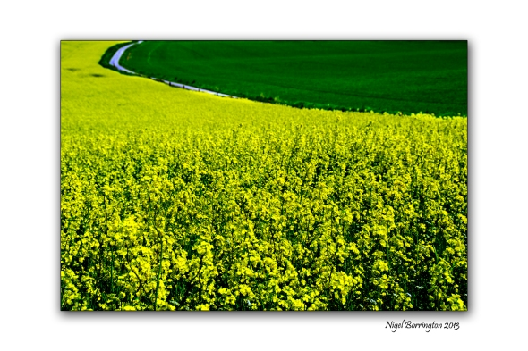 Kilkenny Landscape photography 1