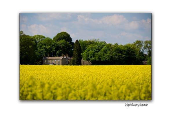 Kilkenny Landscape photography 5
