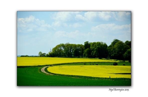 Kilkenny Landscape photography 7