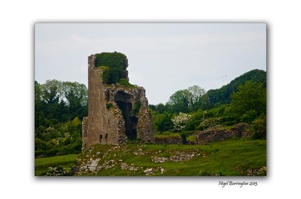 Burnchurch castle 5