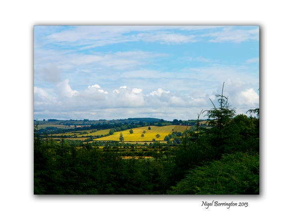Canon G1x landscape 1