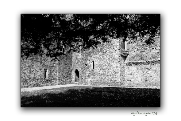 Kilcooley Abbey 1
