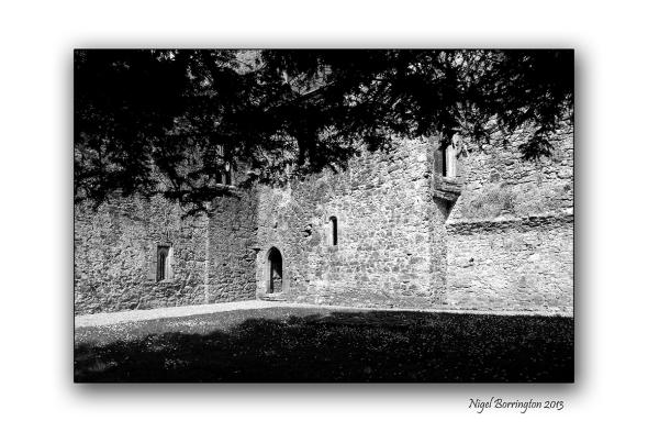 Kilcooley Abbey 1