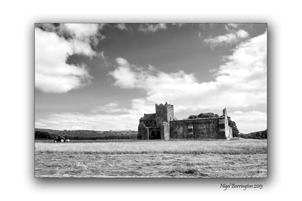 Kilcooley Abbey 5