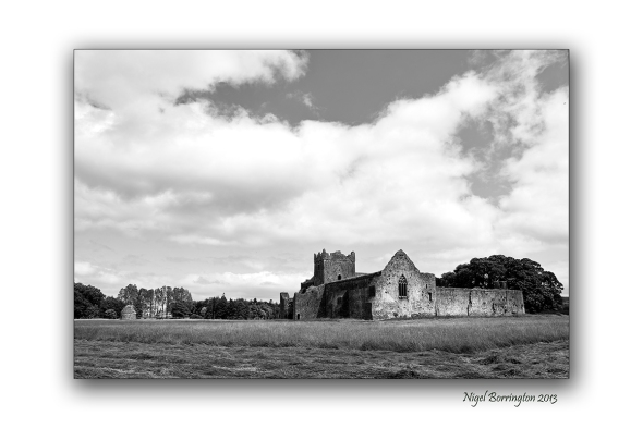 Kilcooley Abbey 6