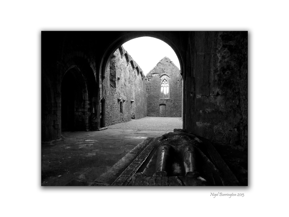 Kilcooley Abbey 8
