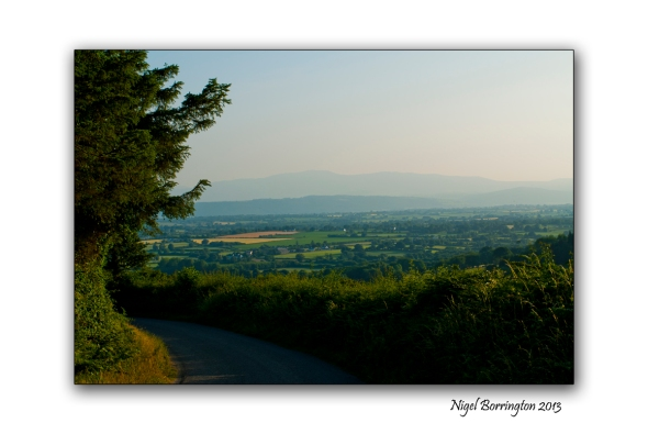 Kilkenny through the tress 6