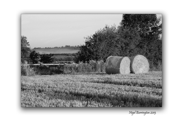 Round Bales black and white 1