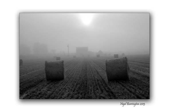 Round Bales black and white 4