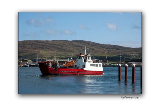 The Ferry to Bere Island 1