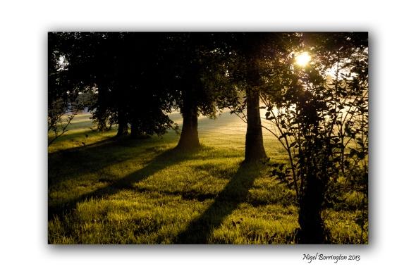 Sunrise Fair Green Callan 1