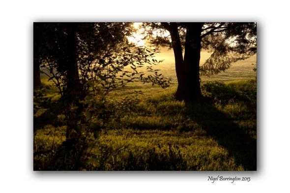 Sunrise Fair Green Callan 3