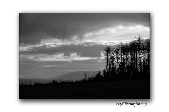 Kilkenny photography 4