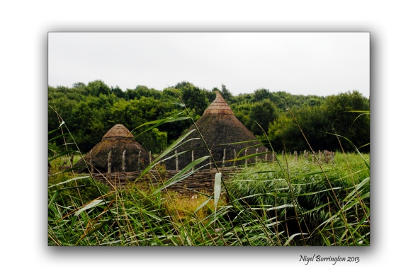 Natinal irish heritage park 8