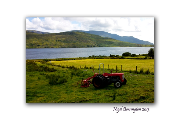 The Red Farm Tractor Nigel Borrington