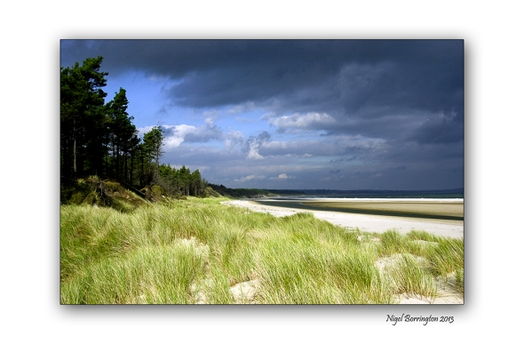 Wexford landscape photography the raven 2