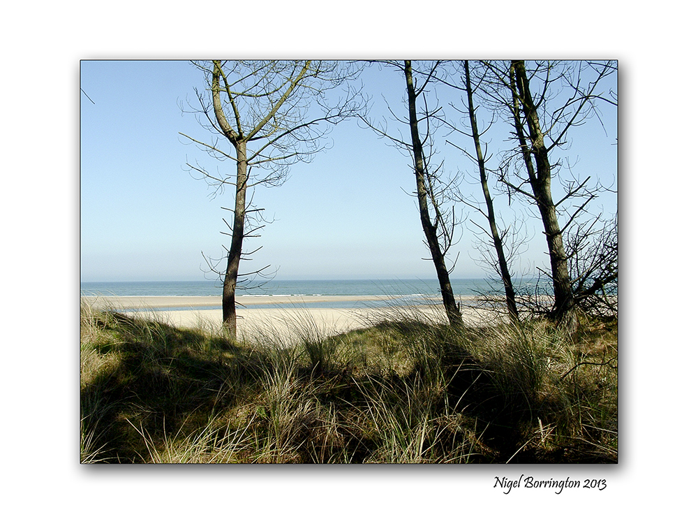 Wexford landscape photography the raven 3