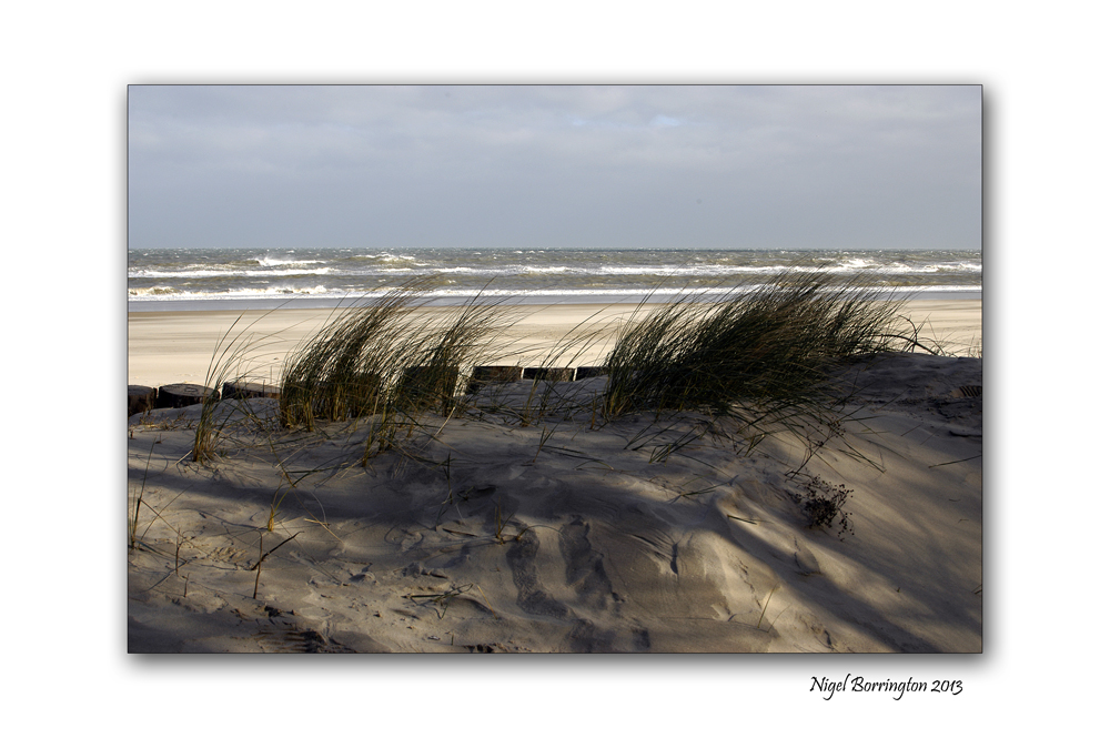 Wexford landscape photography the raven 7