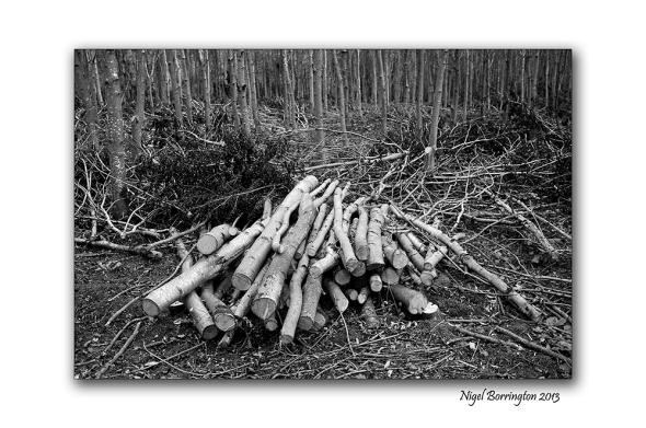 KIlkenny landscape photography 04