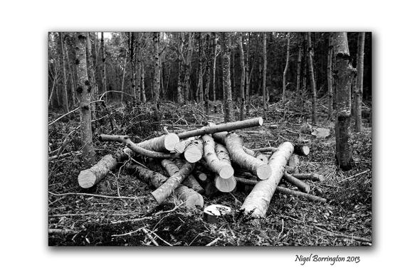 KIlkenny landscape photography 05