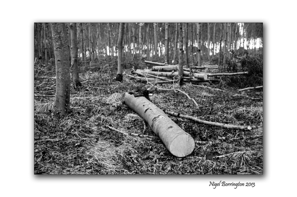 KIlkenny landscape photography 07