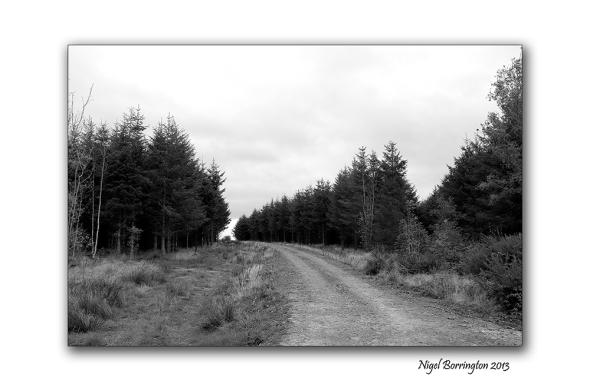 KIlkenny landscape photography 08