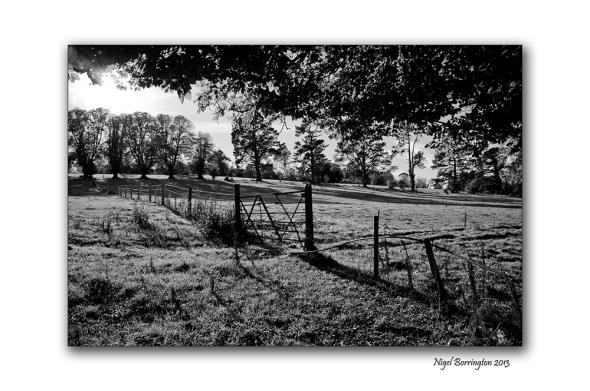 KIlkenny landscape photography woodstock 4