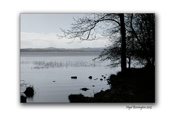 Lough Derg Way Limerick 03