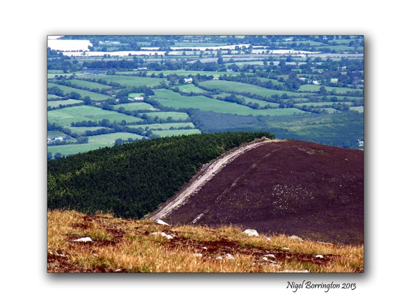 Slievenamon views 2