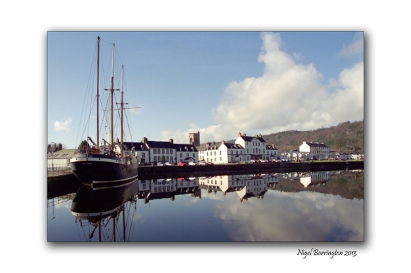 Artic Pengiun Inveraray