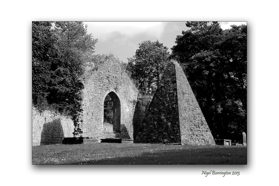 Kilcooley Abbey 3