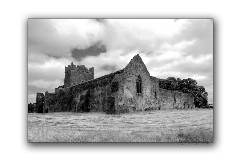 Kilcooley Abbey 4