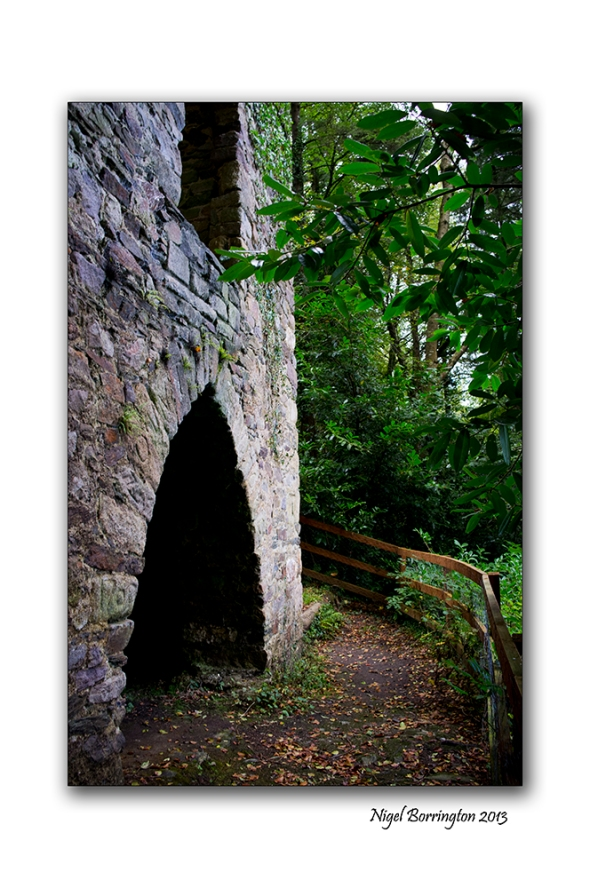 Viewing tower Inistioge 4