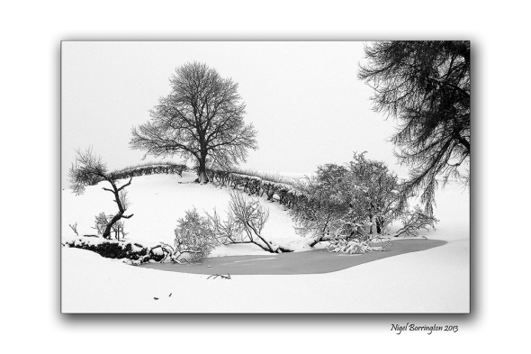 A winters field in the snow 1