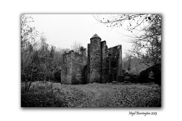 Careys castle 1