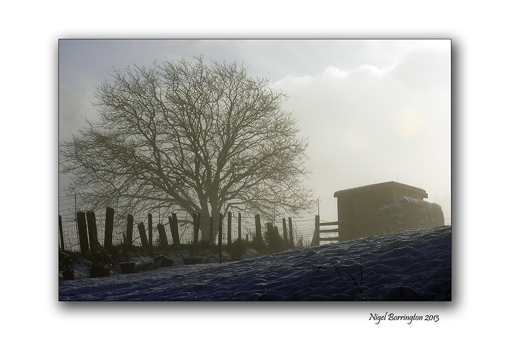 Memories of a winters day 1