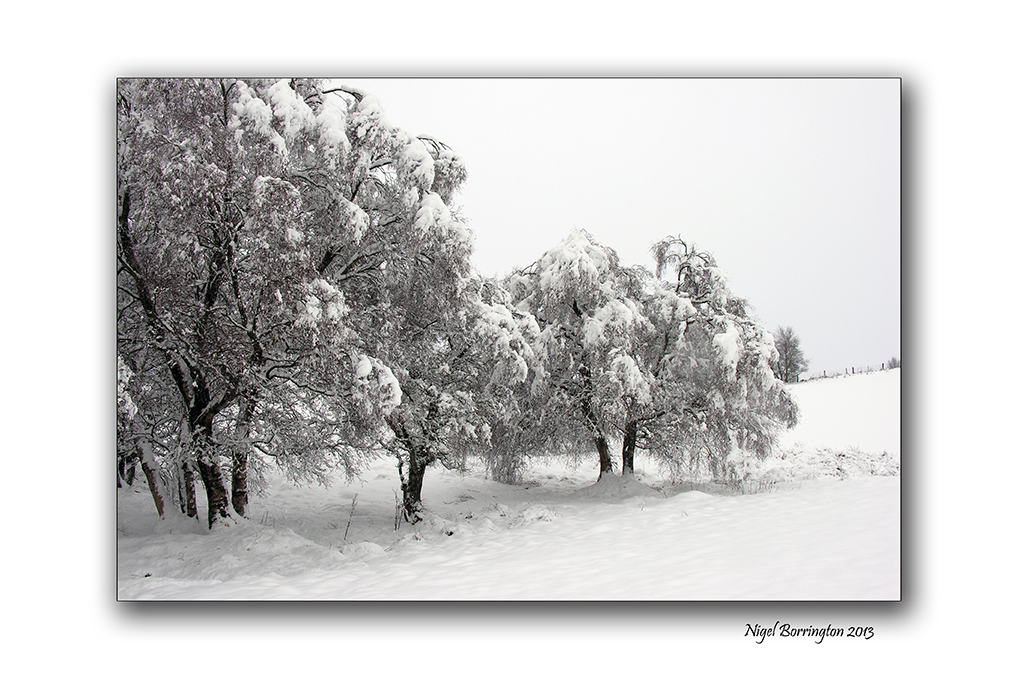 Memories of a winters day 7