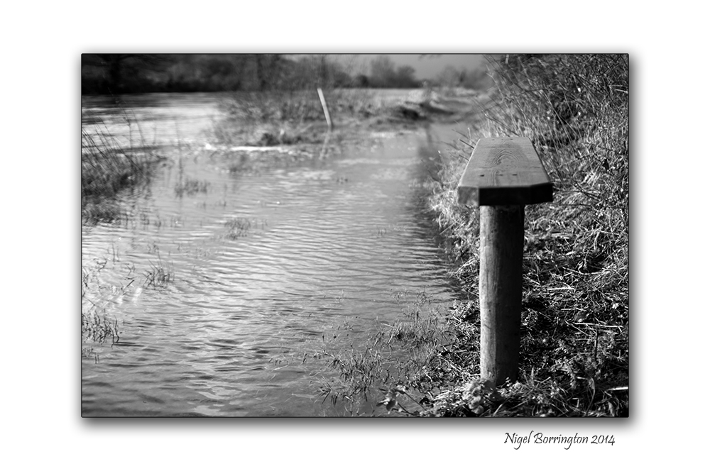 High river flow 6